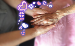 【受付中】アロマハンドセラピスト養成講座